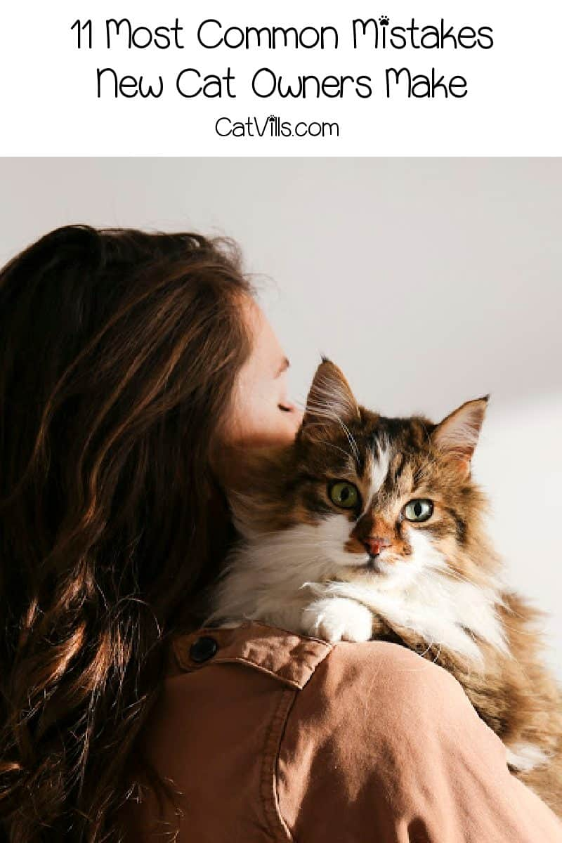 We all want to do what's best for our kitties, and we all make mistakes along the way. Learn from these 11 most common mistakes new cat owners make!