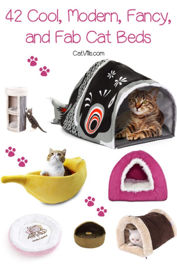 Today, there are more than enough cat beds to fit even the most finicky of feline taste and ours - gone are the day of those unsightly pet beds. Check out these 42 cool, modern, fancy, and fab cat beds your feline (and decor) will love.
