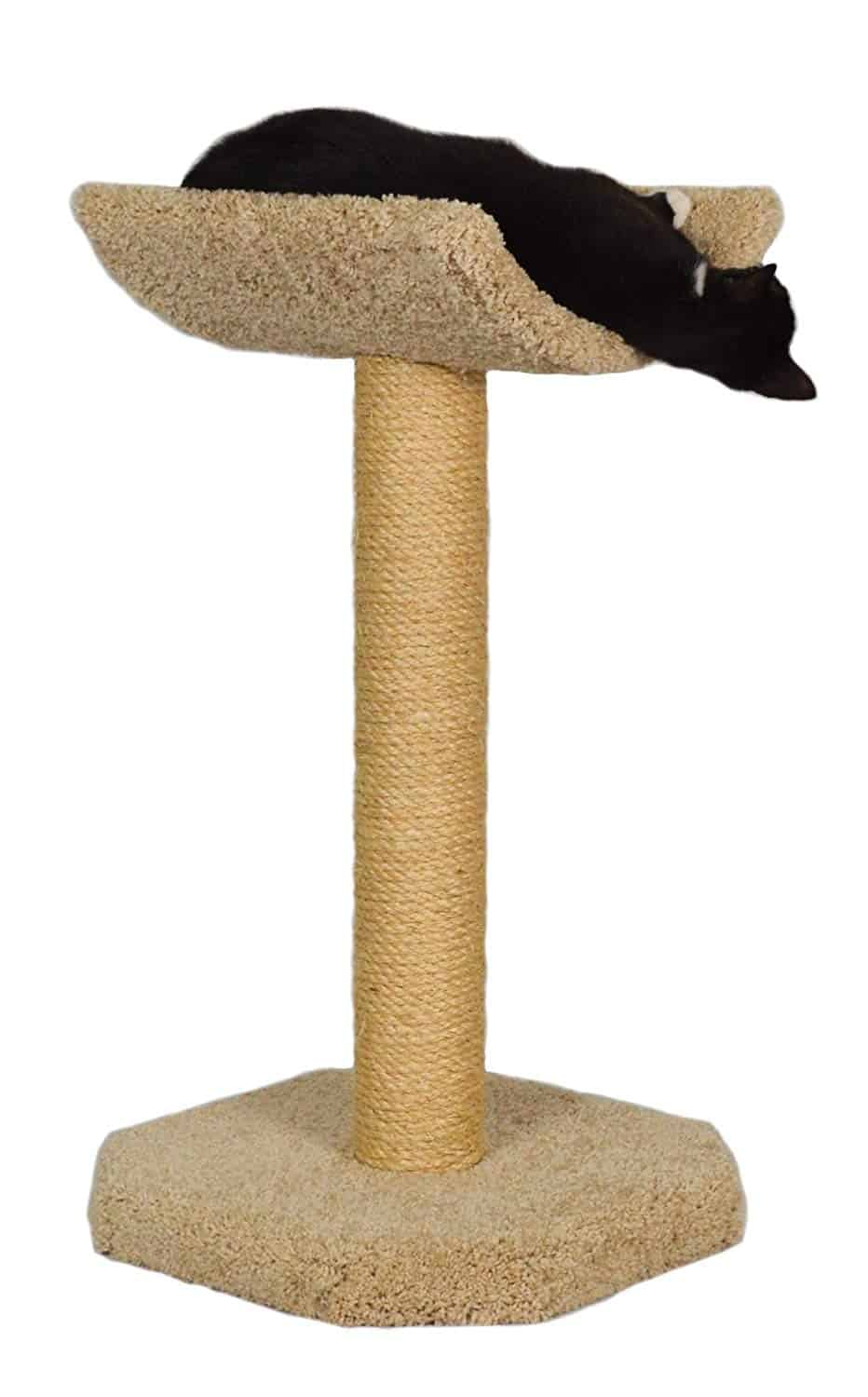 molly and friends scratching post