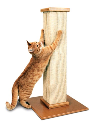 pioneer smartcat scratching post