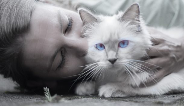 Do you wonder if it's OK to kiss your cat when you pick her up for a cuddling session? Or maybe you want to know if Kitty knows that your kisses are a sign of affection. Then I've got you covered.
