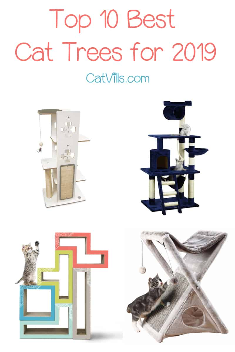 Looking for the best cat trees for 2019? Check out our complete buying guide to find the perfect kitty condo or gym across every category!