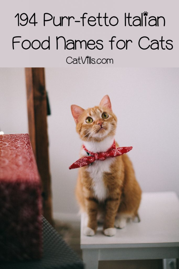 """Looking for some """"purr-fetto"""" Italian food names for cats? How about some wine-inspired cat names? We've got you covered on both with 190+ ideas! Check them out!"""