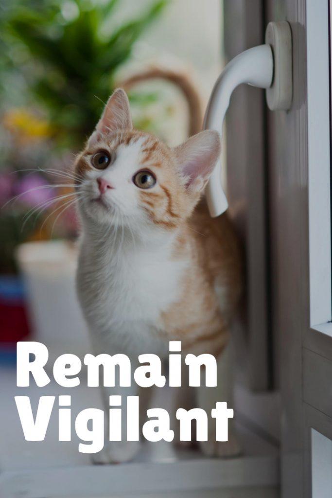 Remain Vigilant