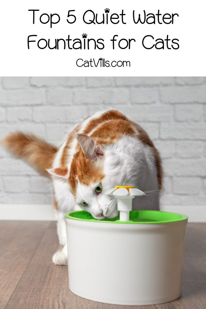 Looking for the best quiet water fountains for cats? Check out our top 5 picks, plus find out why you'd want a cat fountain in the first place!