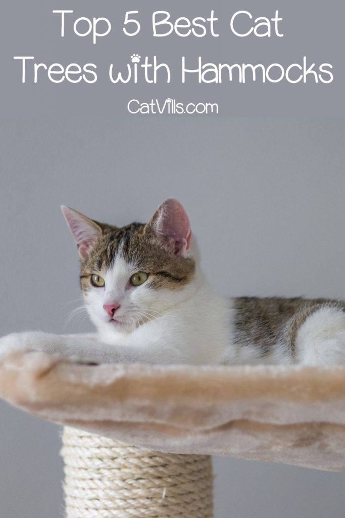 Looking for the best cat trees with hammocks?