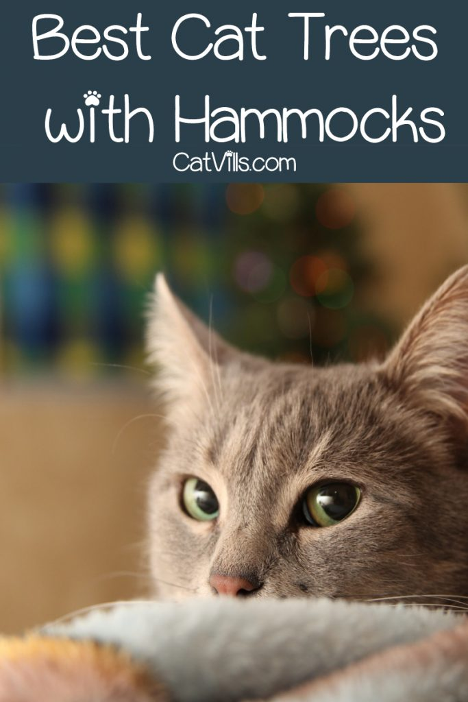 Looking for the best cat trees with hammocks? Check out 5 fantastic & versatile options we love!
