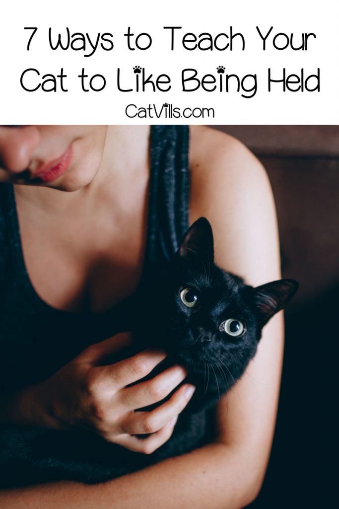 Wondering how to get your cat to let you hold her? Read on for tips to encourage a super independent kitty to do a little more snuggling!