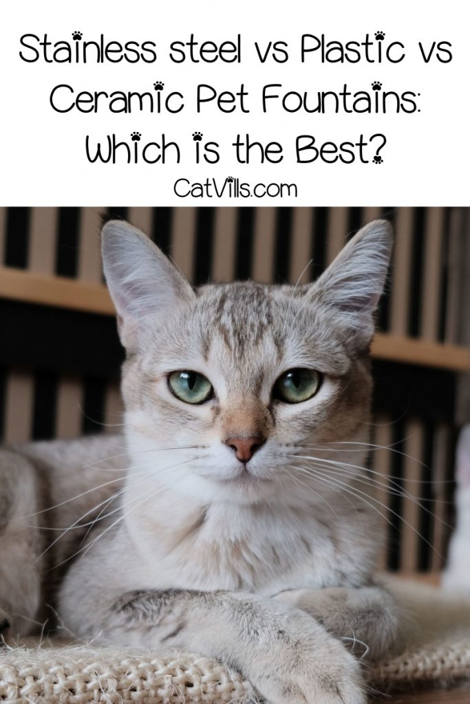 Stainless steel vs plastic vs ceramic pet fountains, oh my! Which one is the safest and overall best option for your cat? Find out!