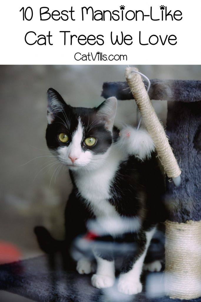 When a regular old cat condo just won't do it for your queen or king, it's time to start looking at kitty mansion cat trees! Check out 10 we love!