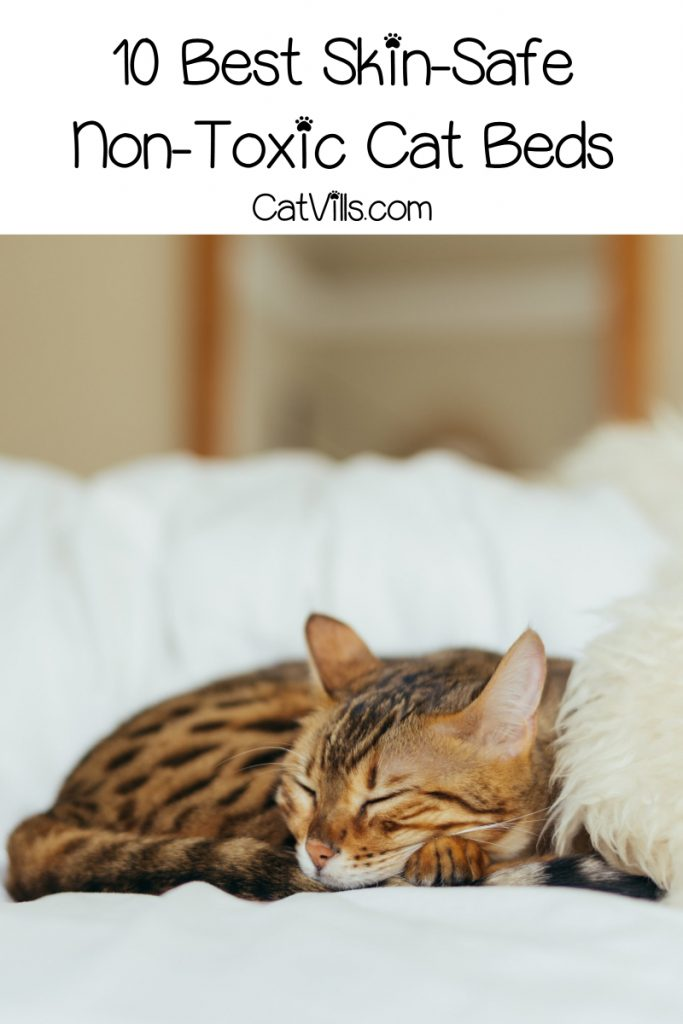 These non-toxic cat beds are a must for kitties with sensitive skin and allergies. Check them out + learn what to look for in skin-safe materials.