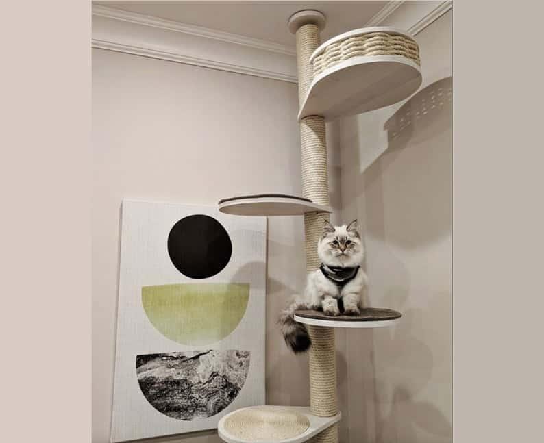 Floor-to-ceiling cat tree. Cat basket. Handmade, luxury cat furniture.