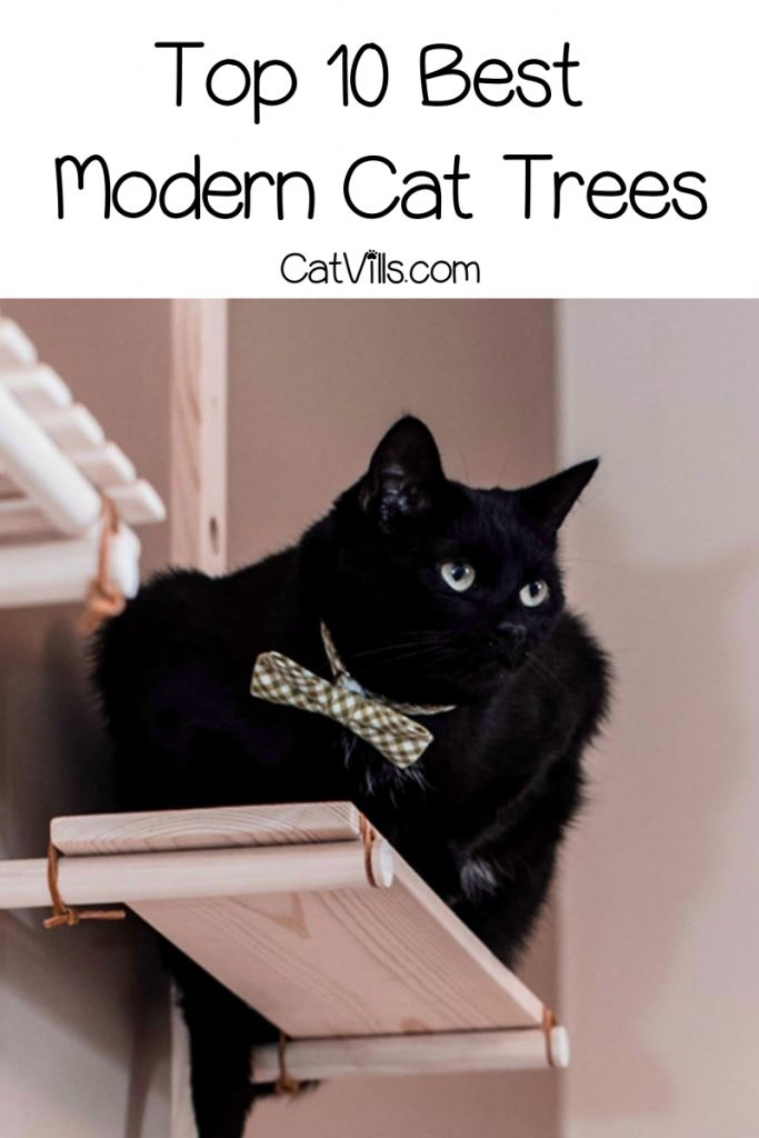 If you think kitty furniture has to be tacky and ugly, you need to see these top 10 best modern cat trees! Check them out!