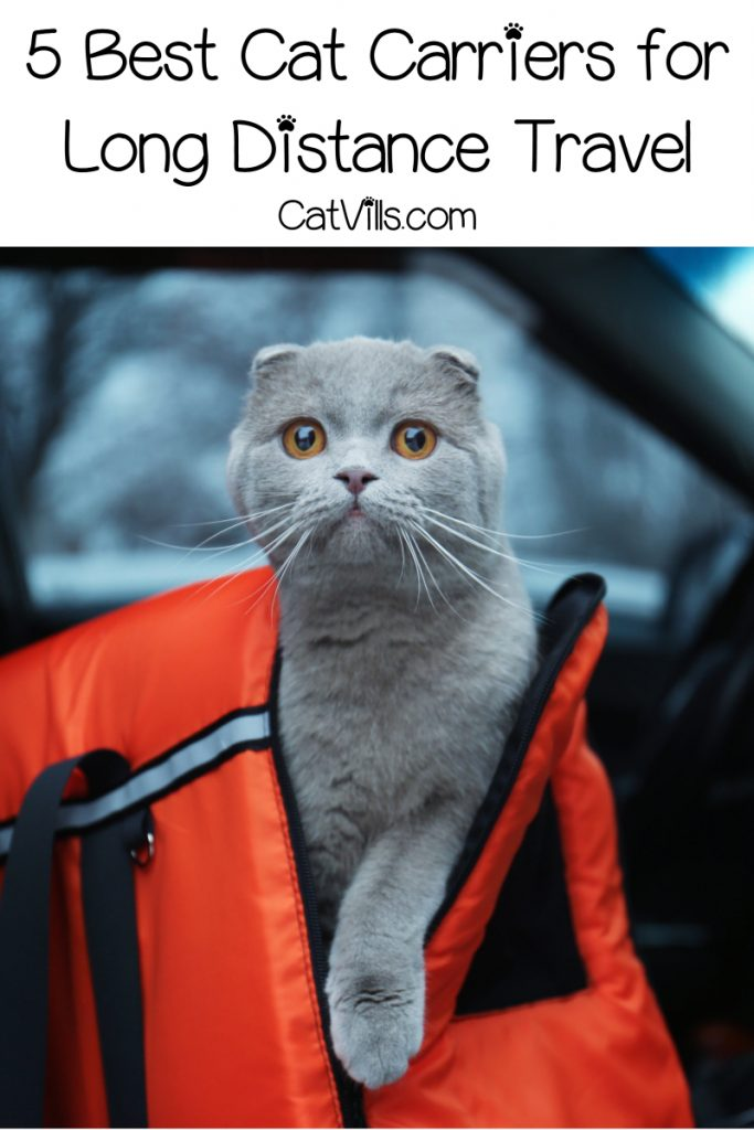 If you're planning a cross-country trek with your kitty, check out our picks for the best cat carriers for long distance travel.