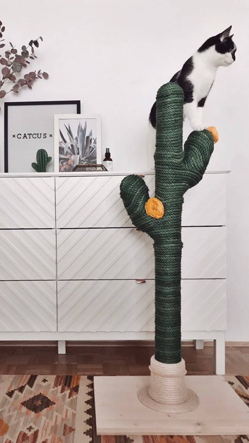 RiverNCats Cactus for Cats