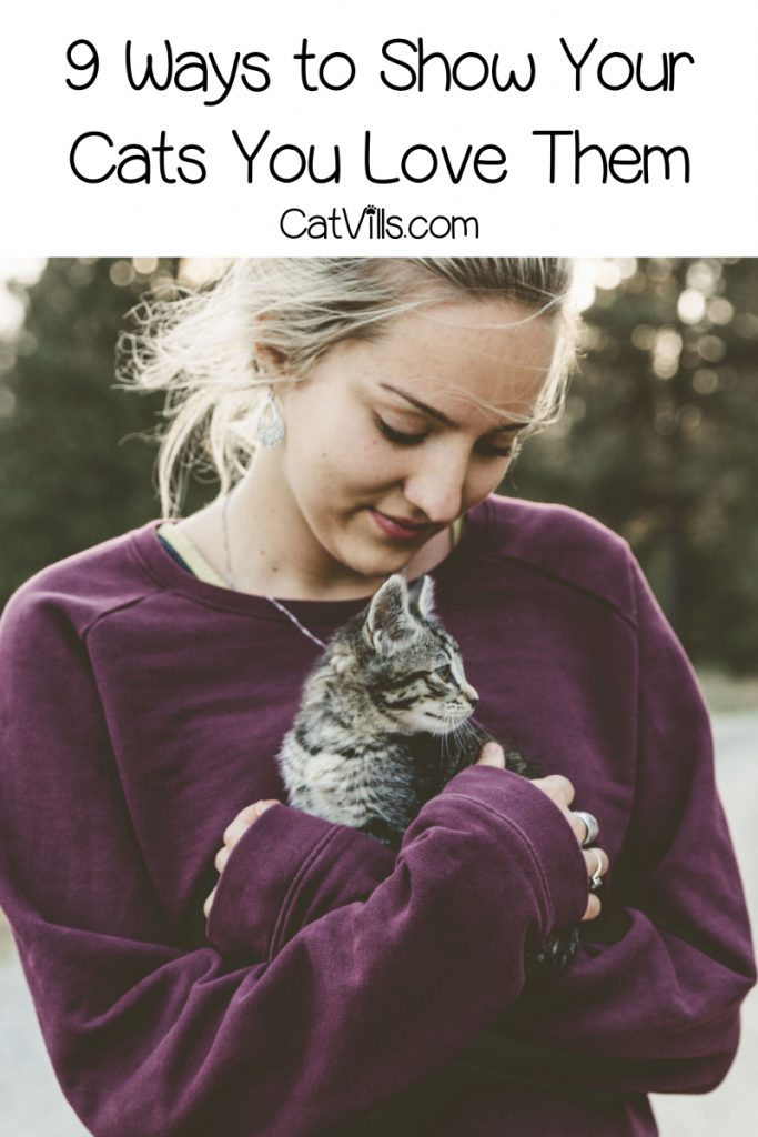 Are you scratching your head on how to show your cat you love them? We want to dote on them as much as possible, so read on for 9 ways to do just that!
