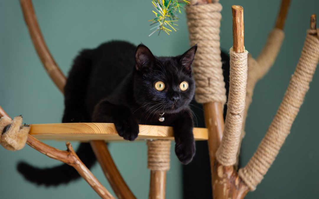 10 Jaw-dropping  Etsy Cat Trees You Have to See to Believe