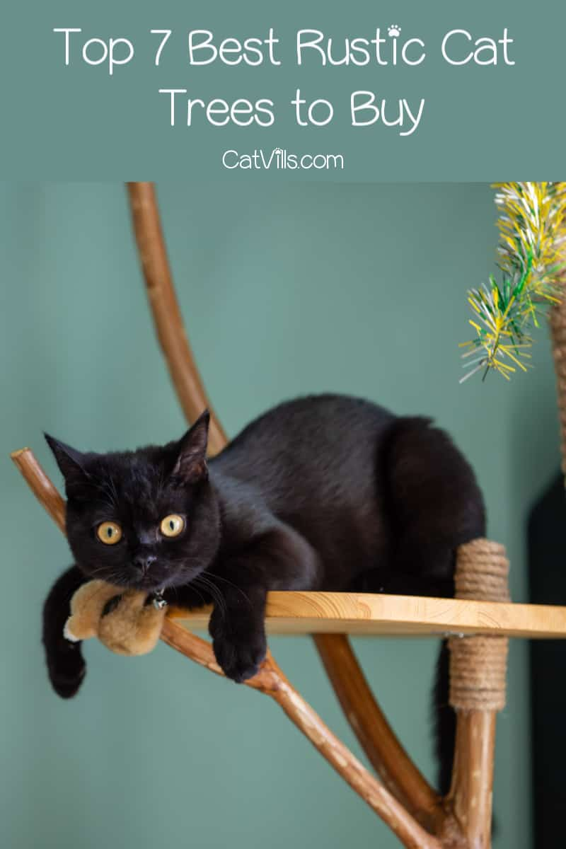 These 7 rustic cat trees fit right at home in a moutain cabin or among farmhouse decor. Check them out, plus take a look at a few fun DIY ideas!