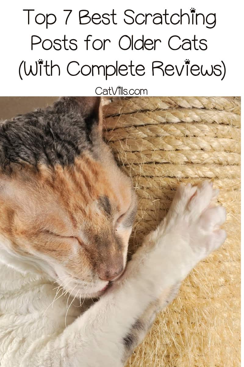 Learn what to look for in the best scratching posts for older cats, then read on for reviews on some of our top recommendations!