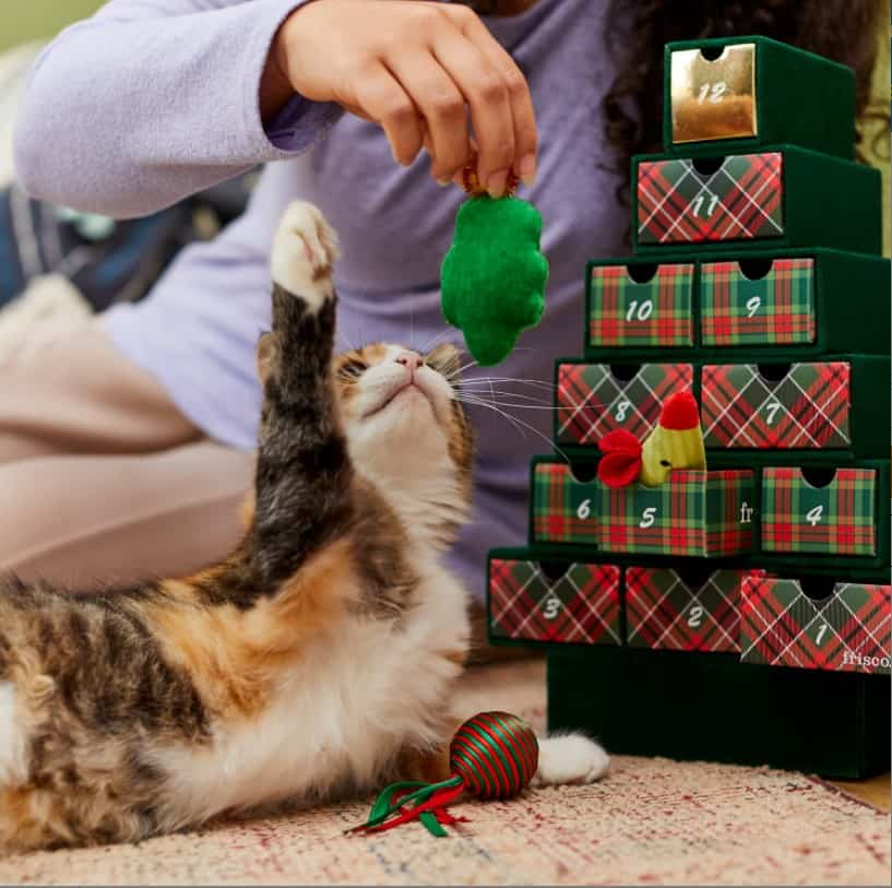 Frisco Holiday 12 Days of Christmas Advent Calendar with Toys for Cats