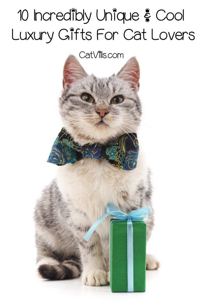 Looking for some amazing luxury gifts for cat lovers? Check out these 10 unique ideas that will make them burst with joy!