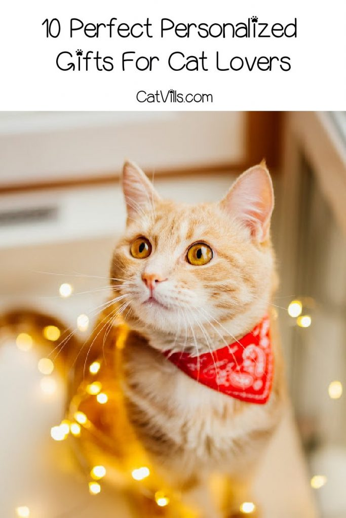 The holidays are inching ever closer, so now is the perfect time to look for amazing personalized gifts for cat lovers! Check out 10 we love!
