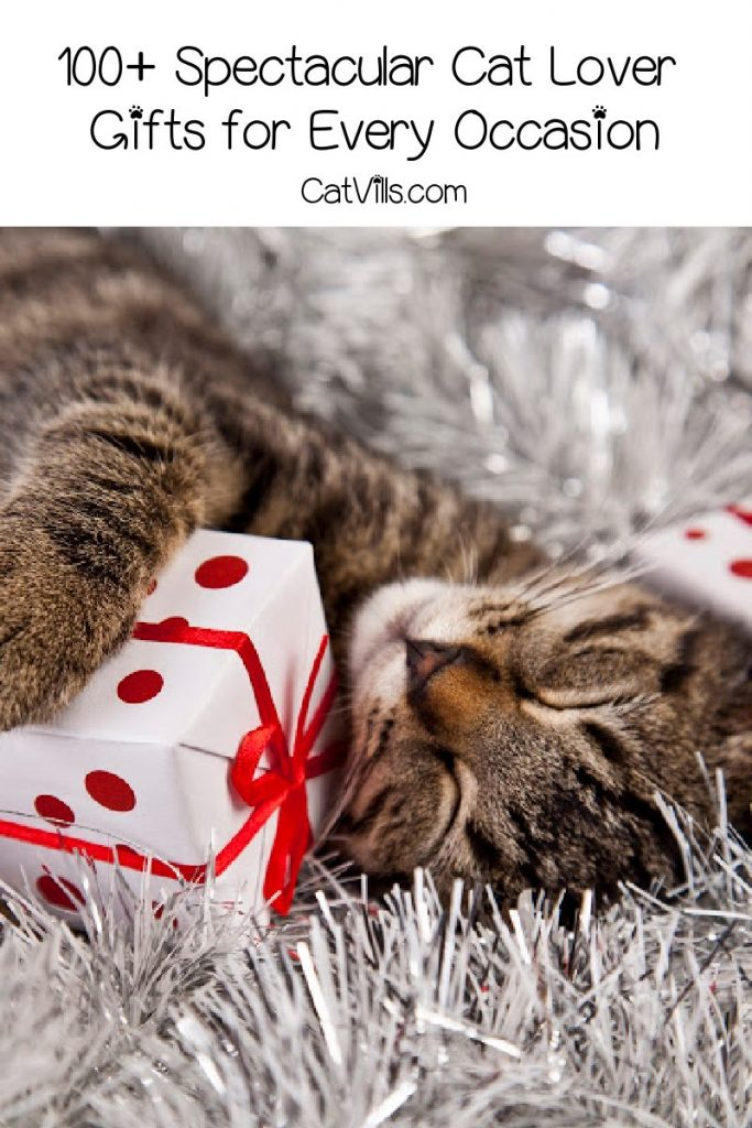Looking for the best cat lover gifts for every single occasion? From birthdays to Christmas and beyond, we've got you covered! Check out more than 100 ideas we adore!