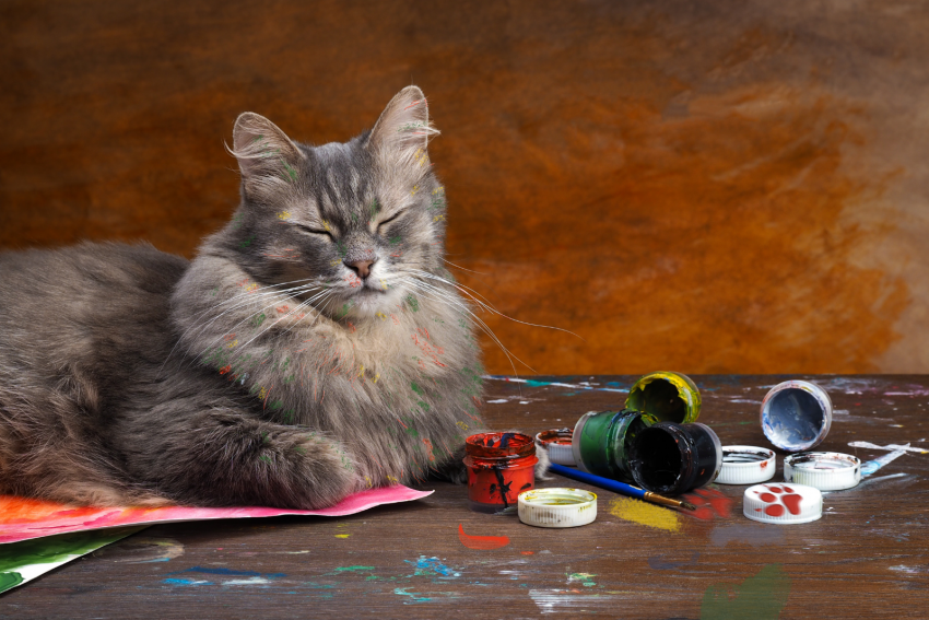 a hairy cat beside messed up paints and brushes
