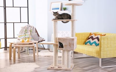 The 5 Best Black and White Cat Trees