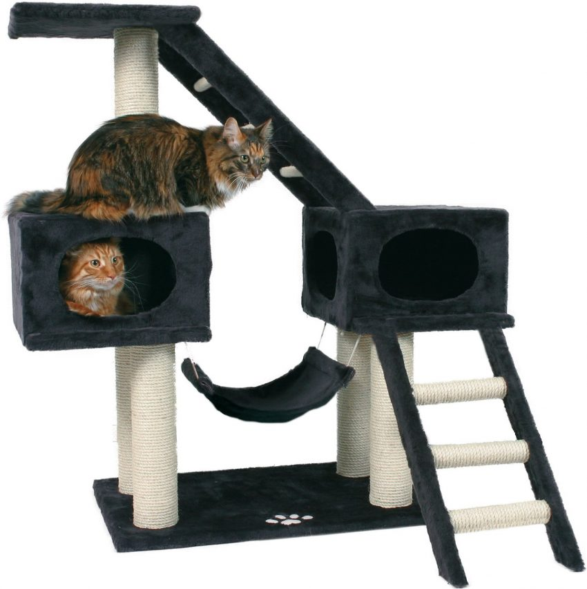 a cat tree with stairs and swing, one of the cutest black and white cat trees