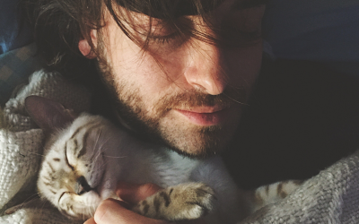 Why Does My Cat Sleep on My Chest? (6 Intriguing Reasons)