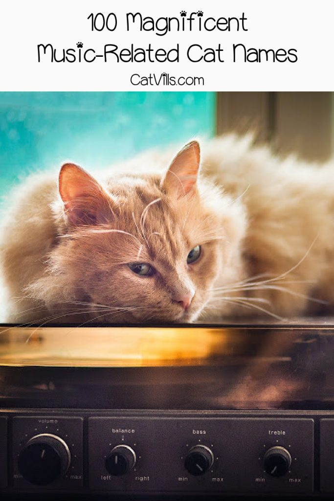 Orange cat laying on top of a record player with text : 100 magnificent music-related cat names.