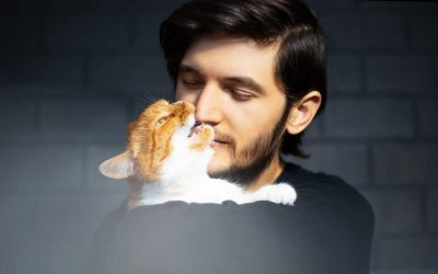 Why Does My Cat Nibble My Nose? [And How To Stop It]