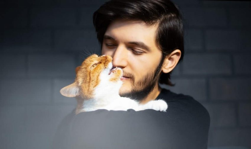 Orange and white cat nipping handsome man's nose