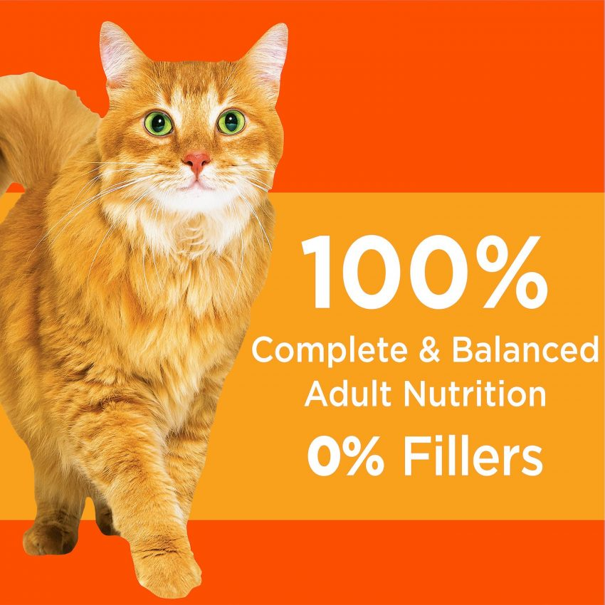 Iams ProActive Health Healthy Adult Original with Chicken Dry Cat Food nutrients