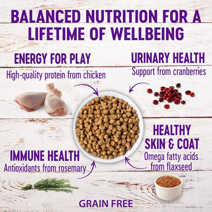 wellness cat food nutrients and benefits