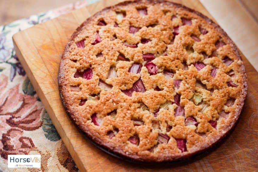 freshly baked rhubarb pie: can cats eat rhubarb pie?