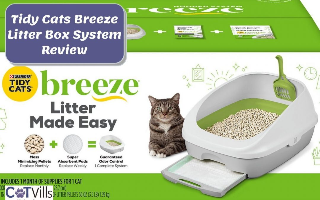 Tidy Cats Breeze System Reviews in 2021