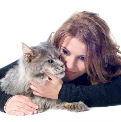 woman hugging a Maine coon. one of the Maine coon cats personality is being affectionate